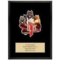 "9"" x 12"" Full Color Custom Plaque - Black Finish"