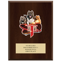 "9"" x 12"" Full Color Custom Plaque - Cherry Finish"